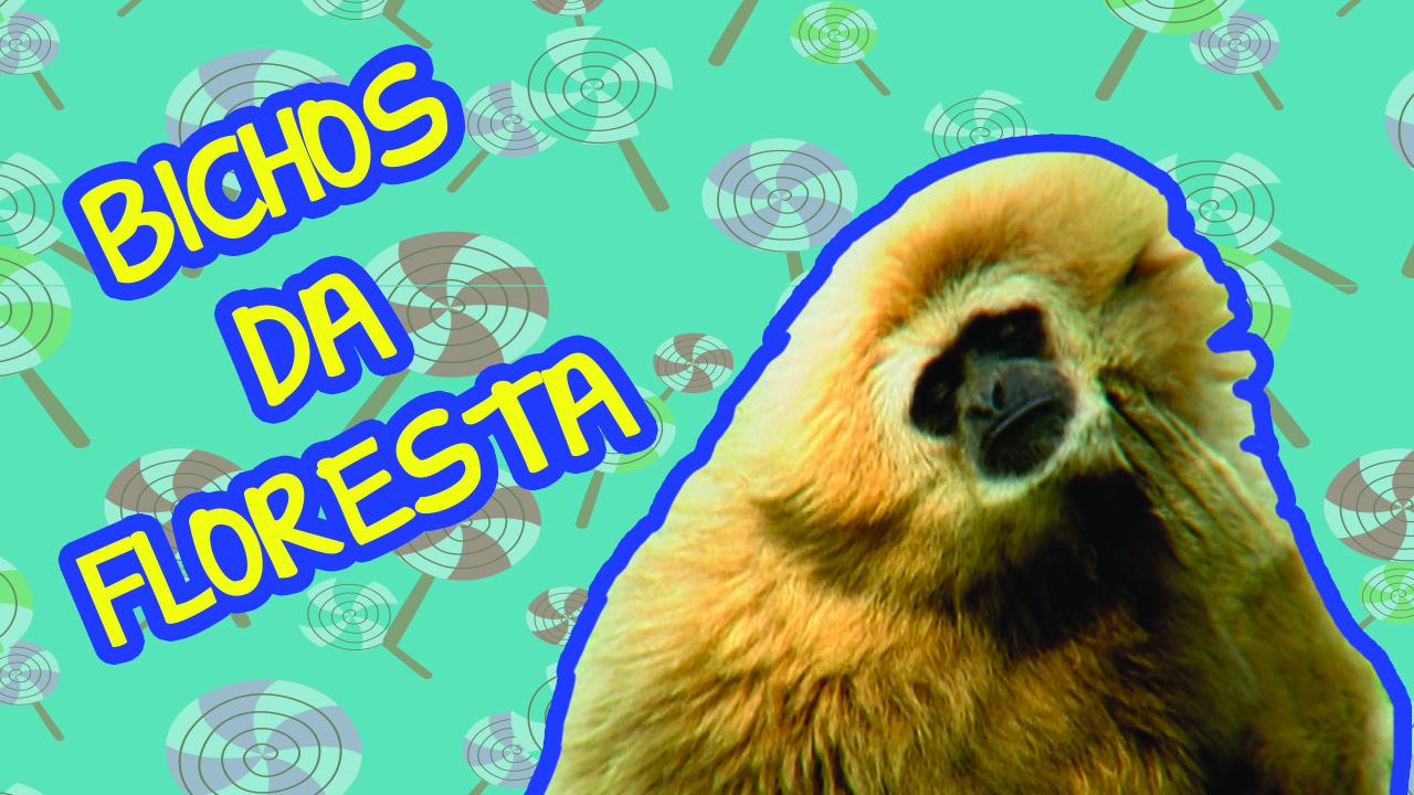 197_bichos_da_floreta